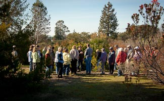 group touring the South African Garden
