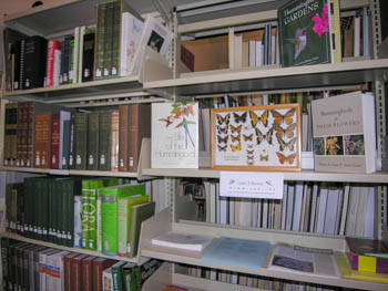 interior jane and bill lane library