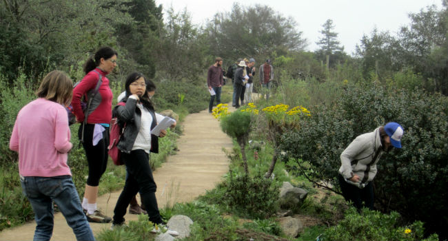 phenology walk