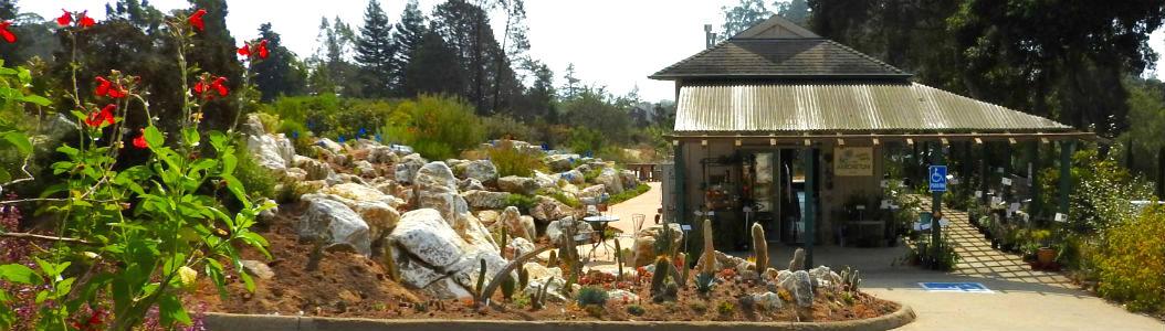 Welcome to Norrie's Gift & Garden Shop